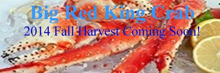 king crab banner